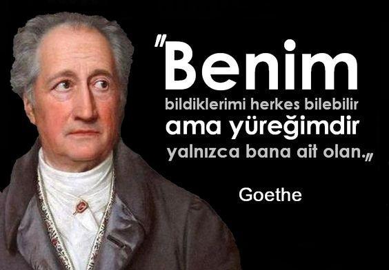 Johann Wolfgang Von Goethe Resimleri