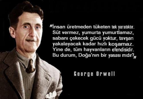 George Orwell Etkileyici Sözleri