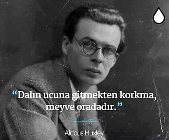 Kısa Aldous Huxley Sözleri